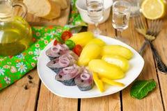 Arenques conservados en vinagre de Bismarck con las cebollas y las patatas Imagen de archivo libre de regalías