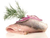 Arenques de Matjes - peixes fotografia de stock