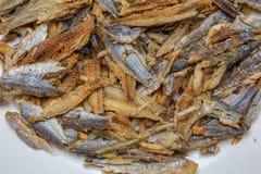 Arenques desossados e limpados dos peixes de Shawa fotografia de stock