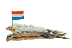 Arenques holandeses fotos de archivo libres de regalías