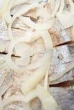 Arenques y cebolla sin procesar Foto de archivo