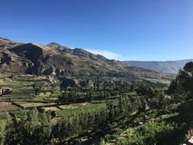 Arequipa Colca Perú, valle alla mattina fotografia stock libera da diritti
