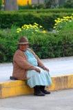 AREQUIPA PERU - FEBRUARI 04: Oidentifierad lokal på de huvudsakliga plommonerna Arkivfoto