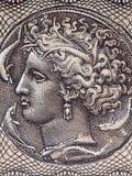 Arethusa, ένα πορτρέτο Στοκ Εικόνες
