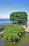 Arethusa fountain with papyrus plants in Ortygia, Syracuse (Sicily) stock photography