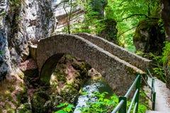 areuse bridge de gorges λ πέρα από τον ποταμό μικρό Στοκ Εικόνες