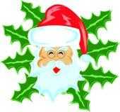 Arga Santa royaltyfri illustrationer