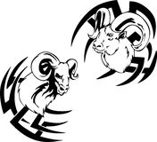 Argali head tattoos Royalty Free Stock Photography