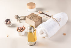 Argan fruit and oil composition Stock Images