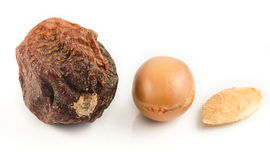 Argan fruits Royalty Free Stock Photography