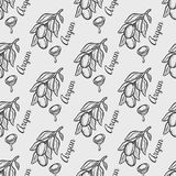 Argan nut oil seamless pattern. Seamless pattern of argan vector drawing nut oil, fruit, berry, plant. Hand drawn engraved vector sketch etch illustration Stock Photography