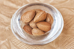 Argan nuts in a glass cup. Stock Images