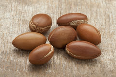 Argan nuts Stock Photo