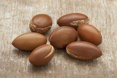 Argan nuts Stock Photo