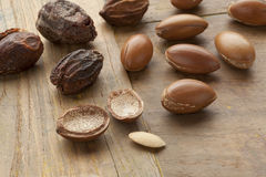 Argan nuts Royalty Free Stock Photo
