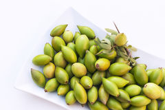 Argan nuts in a white plate. Stock Photography