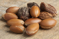 Argan nuts Royalty Free Stock Image