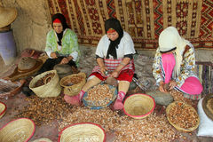 Argan oil. Some Moroccan women to the production of Argan oil stock images