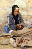 Argan oil. A Moroccan woman to the production of Argan oil stock photography