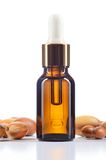 Argan oil and argan nuts on white background. Stock Photo