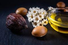 Argan oil and fruits Royalty Free Stock Photos