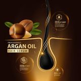Argan oil hair care protection contained in bottle. Golden and black background 3d illustration Stock Images