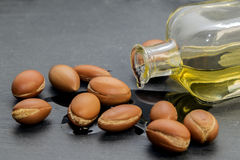Argan oil , liquid gold of Morocco. Stock Photos