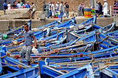 Fishing boats in the port of Essaouira. Essaouira Morocco Features blue-colored boats in the harbor waiting to go out to sea. Fishing boats in the port of Royalty Free Stock Photos
