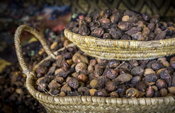Argan seeds Royalty Free Stock Photography