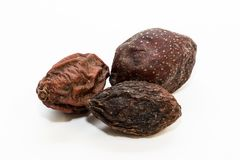 Argan seeds. For the production of oil. Very nutritious for skin and hair stock image