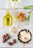 Argan and shea nut Royalty Free Stock Image