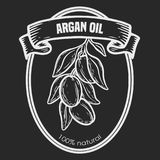 Argan vector drawing nut oil, fruit, berry, leaf, branch, plant. Argan vector drawing  label nut oil, fruit, berry, leaf, branch, plant. Hand drawn engraved Stock Photography