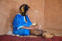 The Argan worker Royalty Free Stock Photography