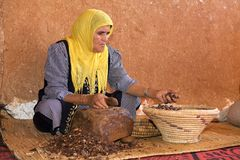The Argan worker Stock Image