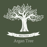 Argania树或圆筒芯的灯果类植物 免版税库存图片