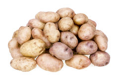 Arge bunch o rustic yellow potatoes Royalty Free Stock Images