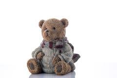 Argent-boîte d'ours de Brown Photographie stock libre de droits