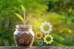Argent d'économie avec la pièce de monnaie au pot en verre et à la plante verte pour des affaires Image stock