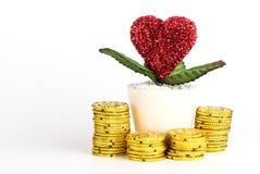 Argent d'économie pour le concept d'amour et de mariage Images libres de droits