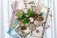 Argent de pièce de monnaie avec l'élevage vert de lame Image stock