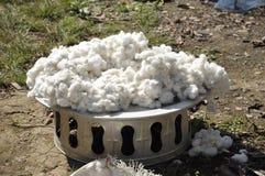 Argent extérieur de cru de plateau de coton Photographie stock