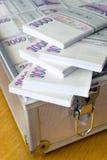 Argent tchèque - billets de banque dans un cas photo stock