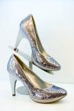 Argentate stiletto high heels Royalty Free Stock Photos