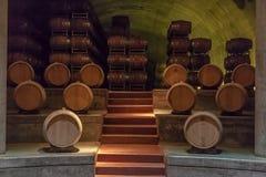 argentina baryłek mendoza dębowy wino Obraz Stock