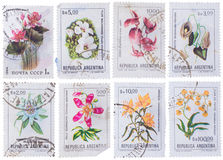 ARGENTINA - CIRCA 1983: stamp set of stamps showing flowers Royalty Free Stock Photos