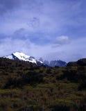 argentina del paine patagoniatorres Arkivbild