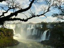 argentina faller iguazuen Arkivbild
