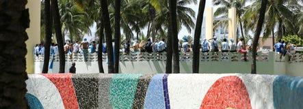 Argentina fans som firar på Miami Beach Royaltyfri Fotografi