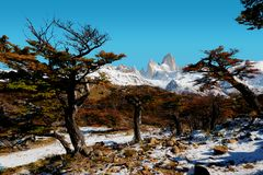 Argentina Fitz Roy fotos de stock royalty free