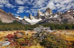 argentina fitzmontering roy Royaltyfria Bilder